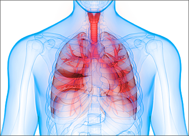 呼吸器イメージ